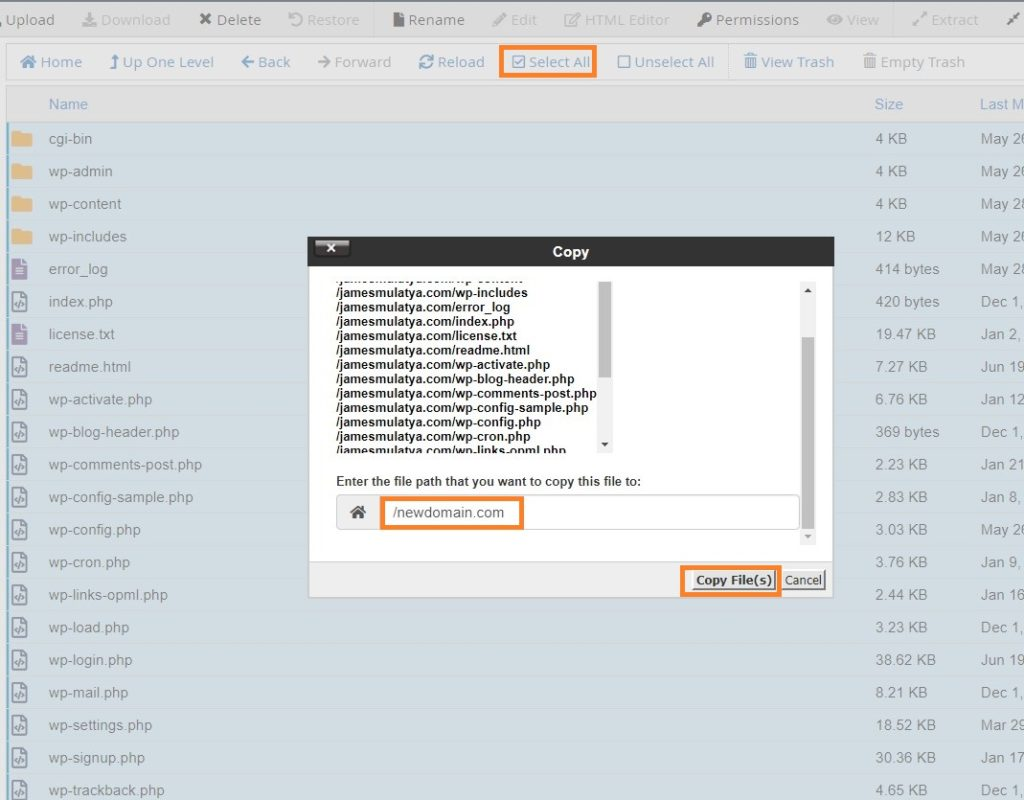 Files Manager in cPanel Copying Files Confirmation Popup