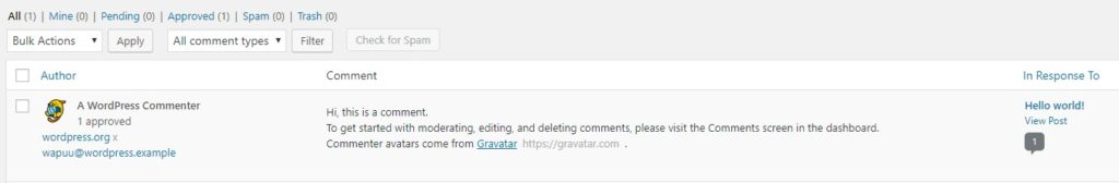 WordPress Dummy Comment
